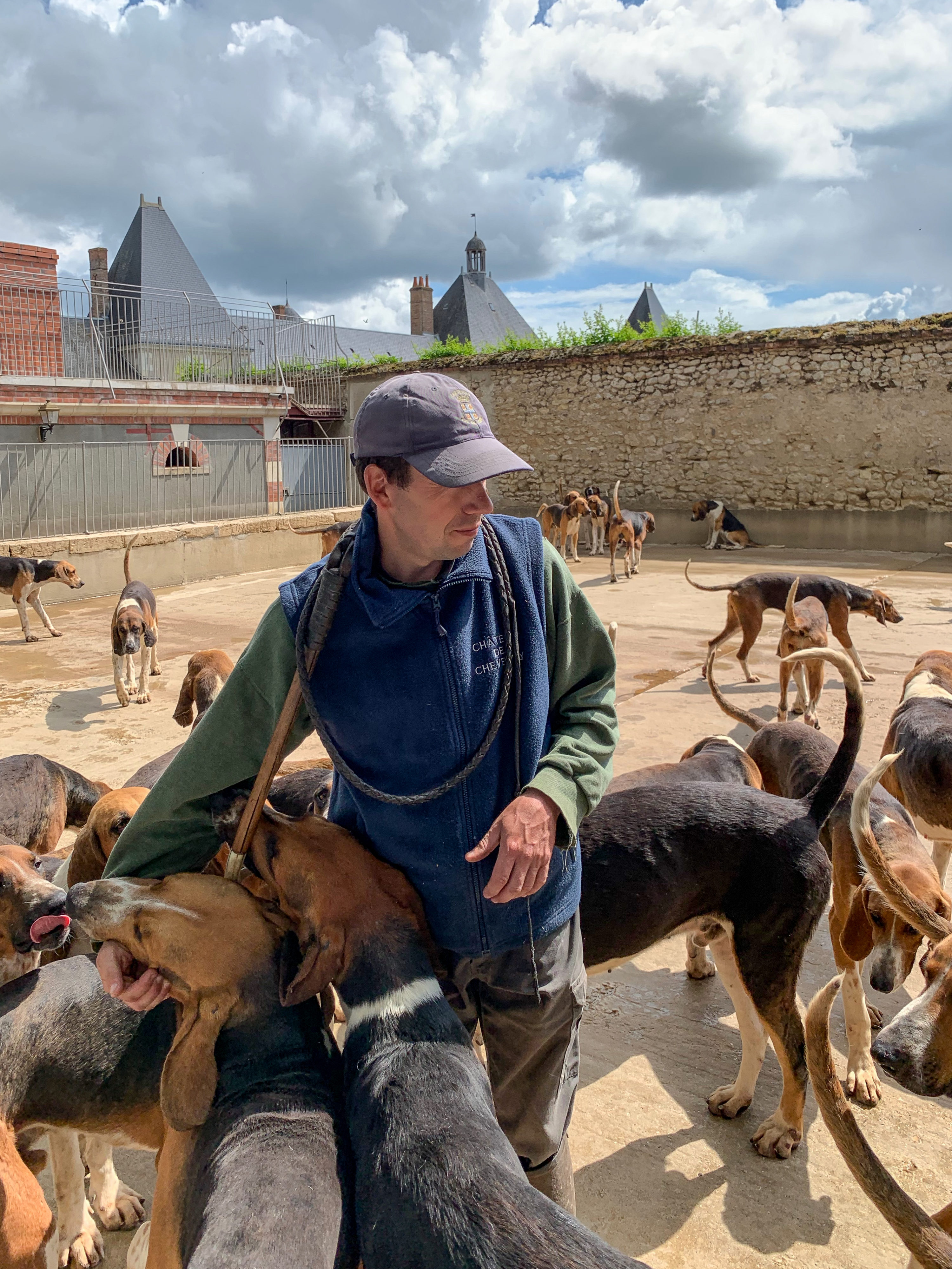 Cheverny Hundemeute Entspannung nach der Fütterung