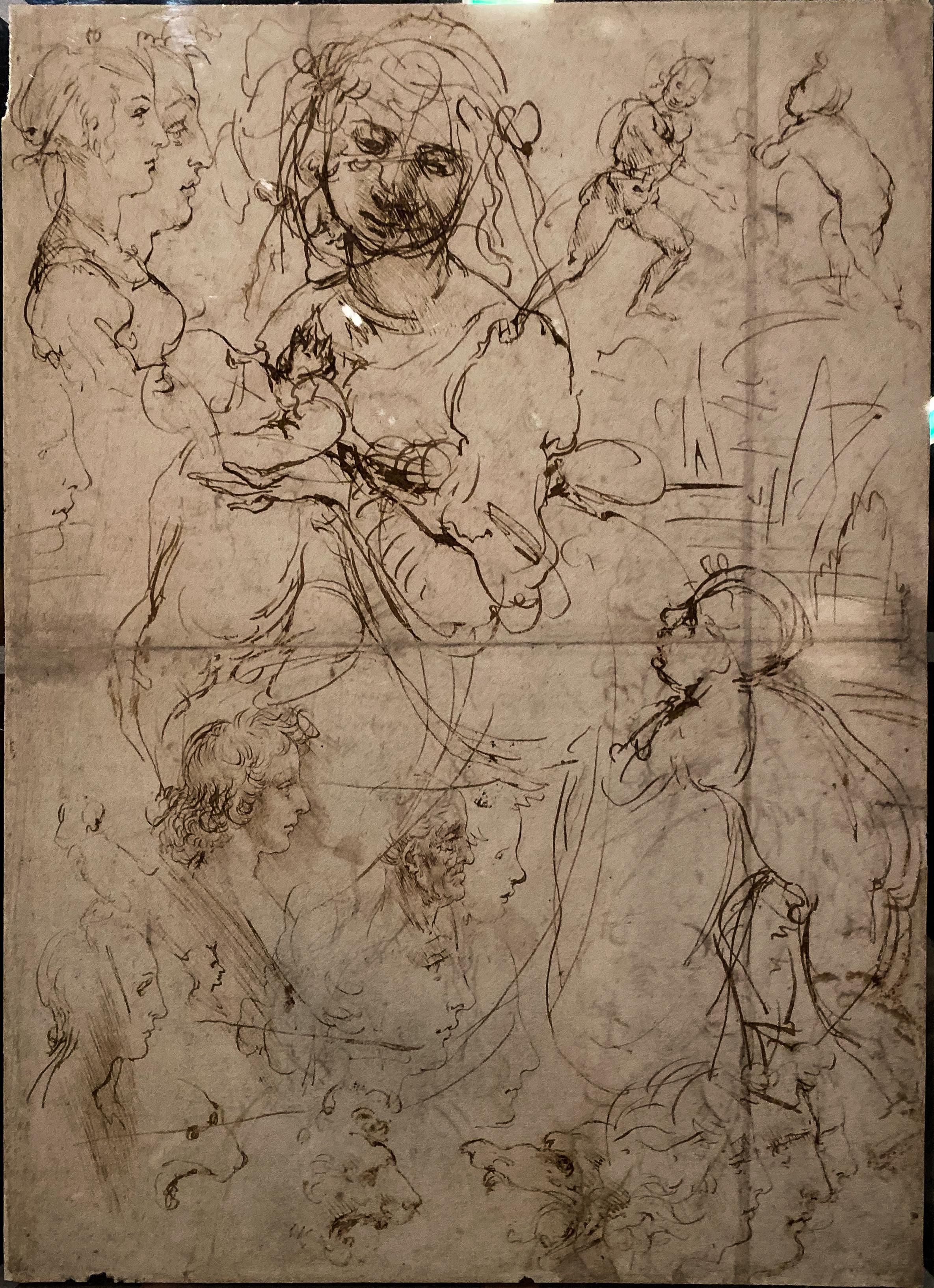 Leonardo da Vinci – Jahrhundertausstellung im Louvre Studienblatt Windsor