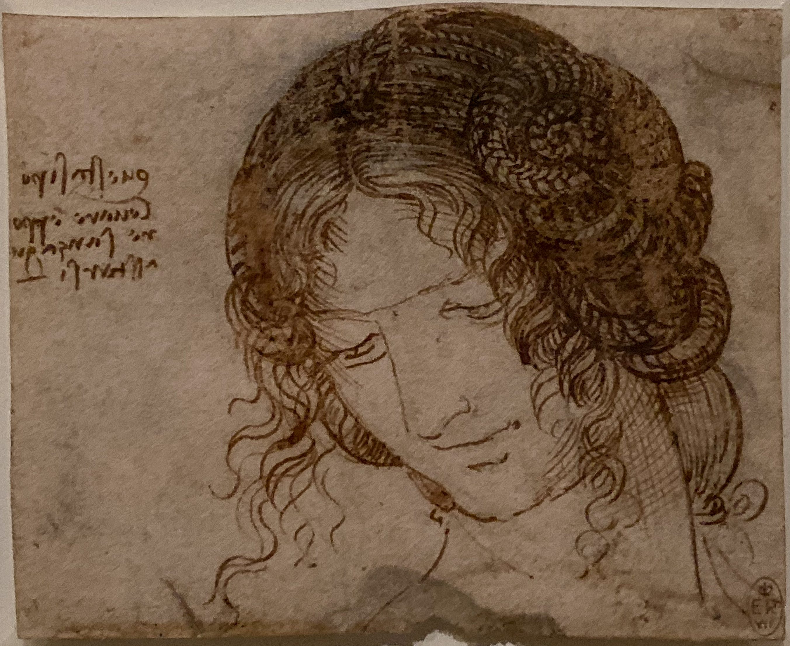 Leonardo da Vinci – Jahrhundertausstellung im Louvre Leda Windsor