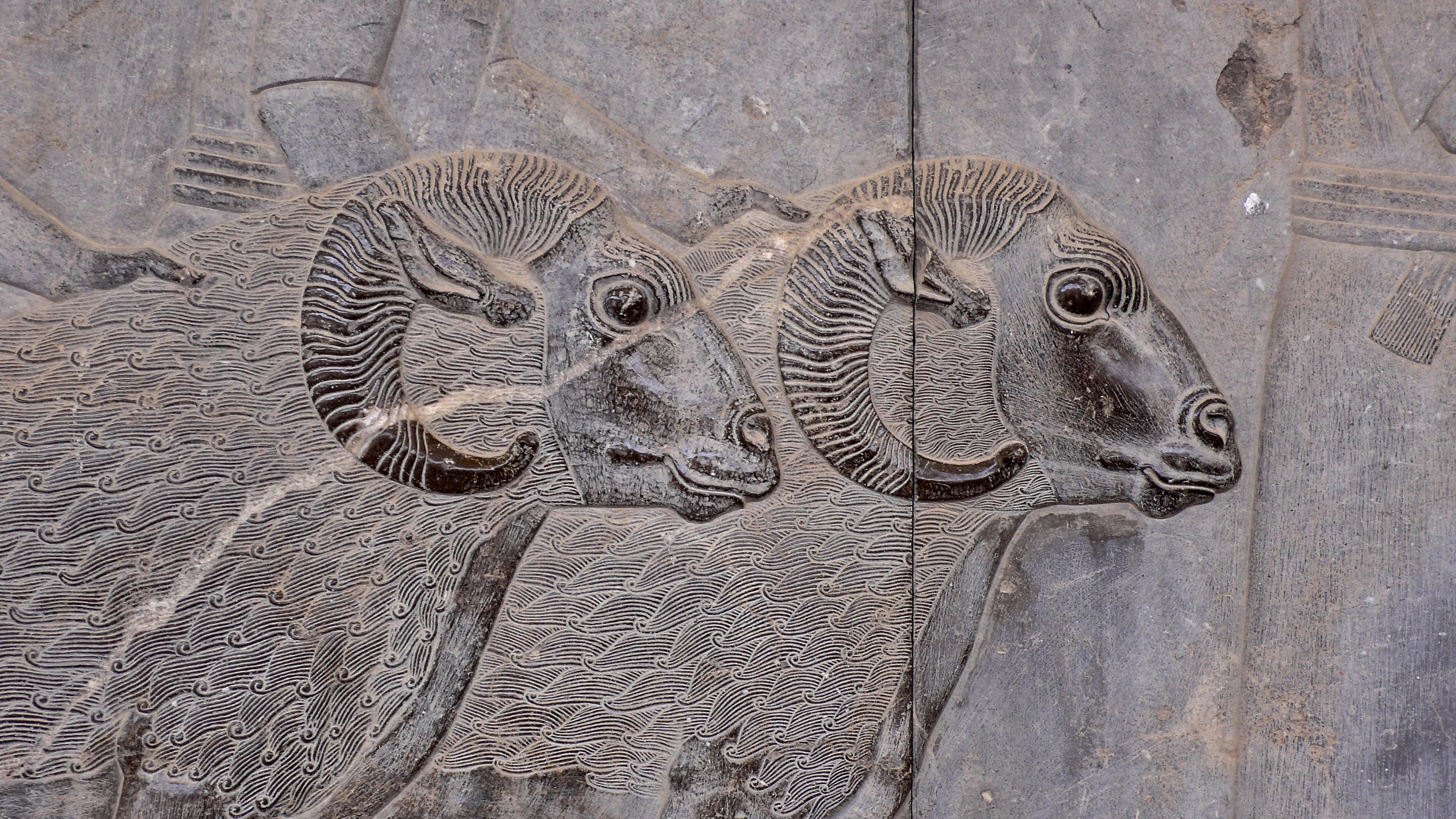Persepolis Widderpaar