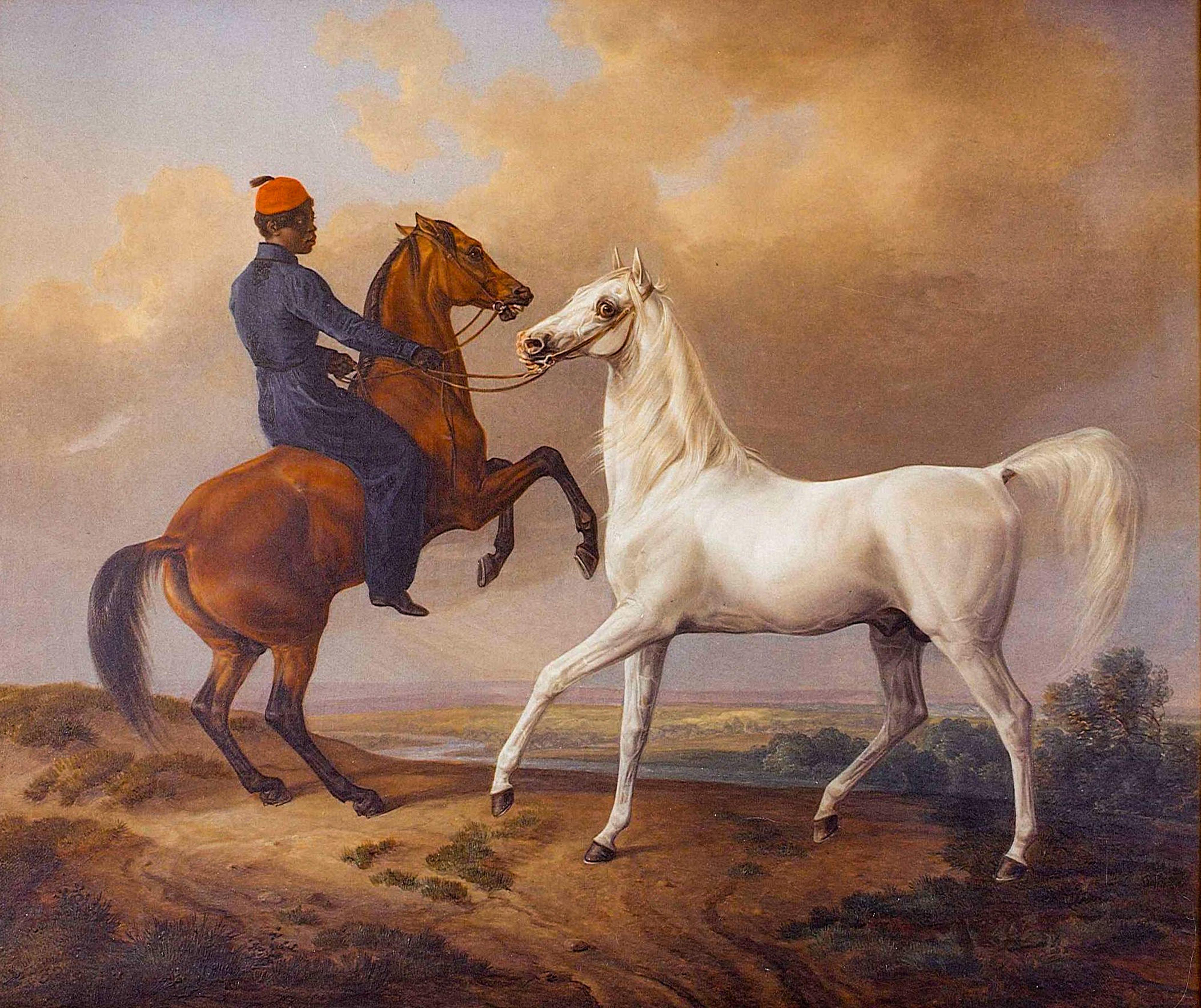 Bairactar ist der Stammvater des Kgl. Privatgestüts und der 200 Jahre Zucht von Arabischem Vollblut im Land