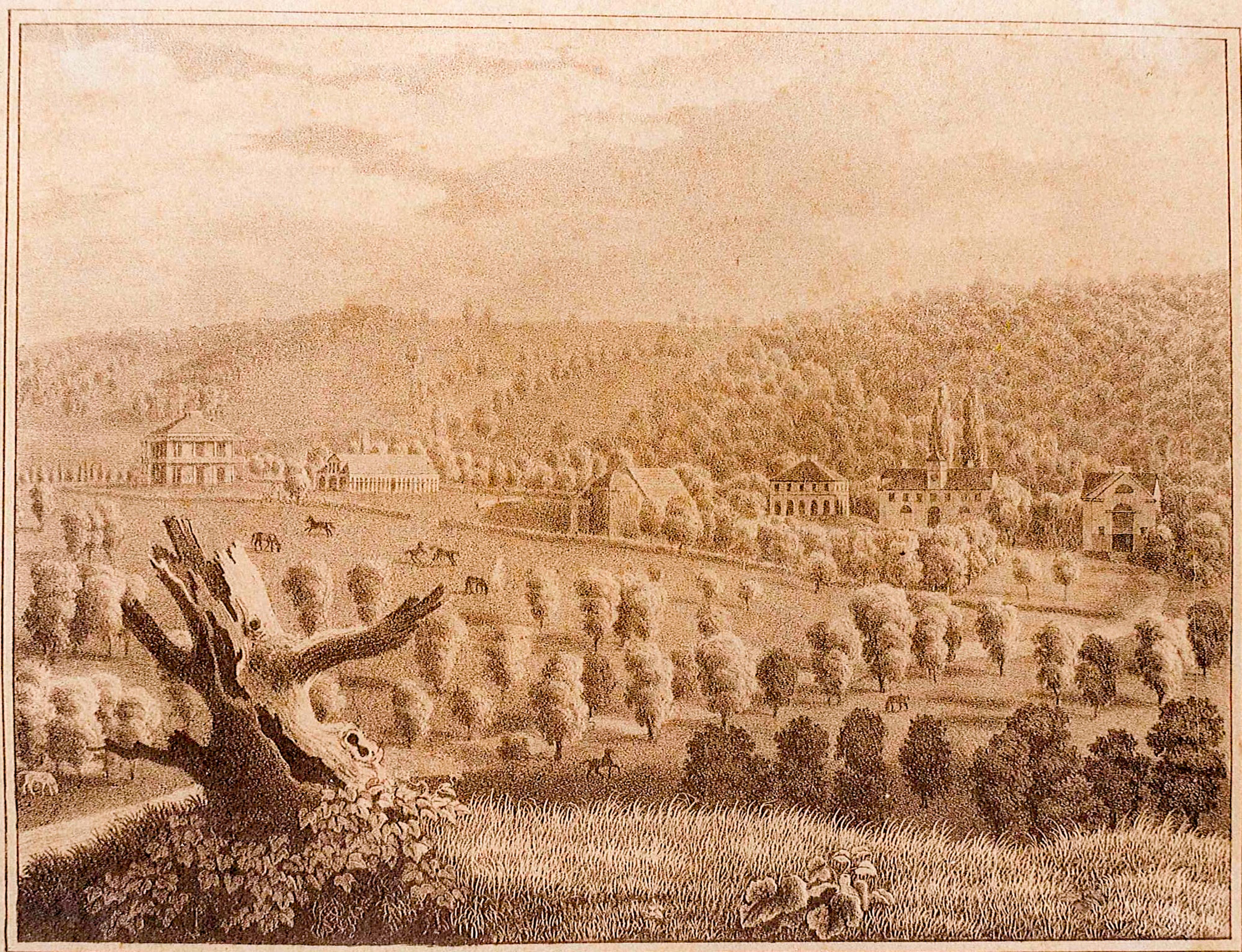 Gesamtansicht Gestüt Weil Hermann Fleischhauer um 1830
