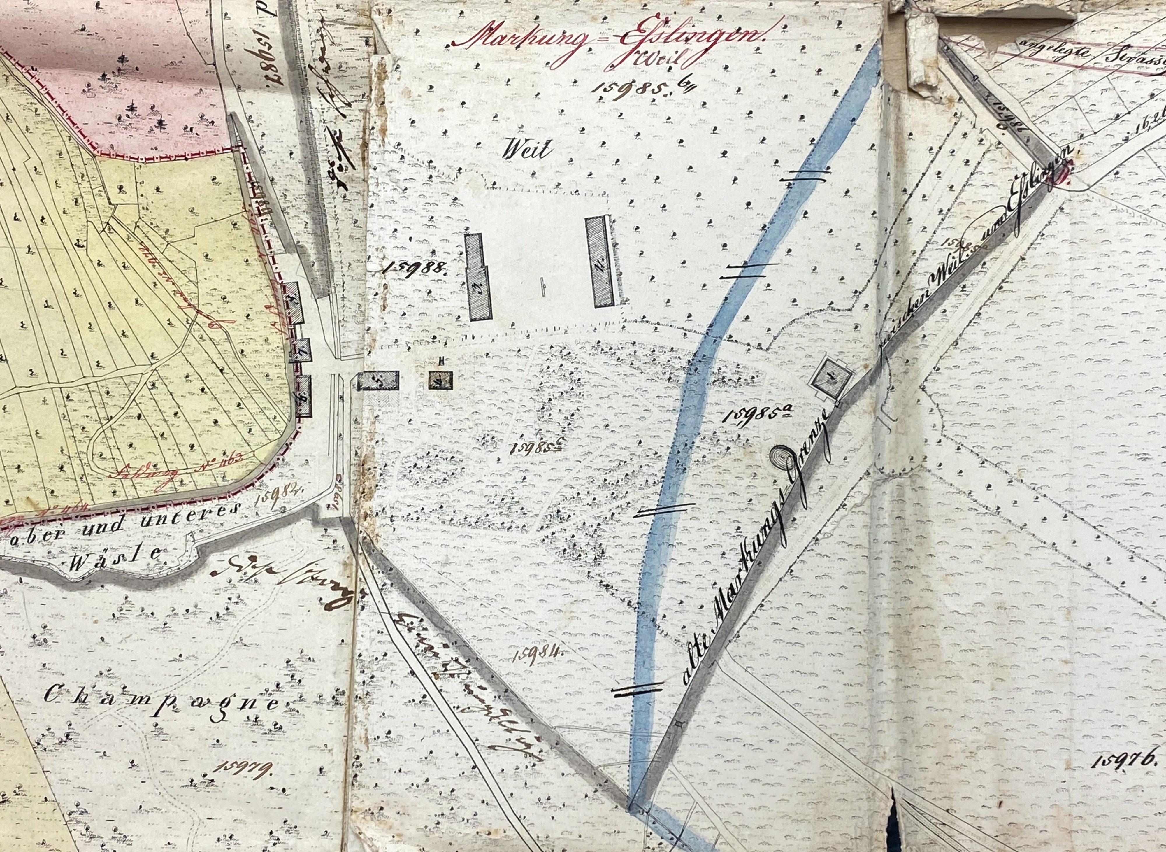 Gemarkungsplan um 1850 mit den damaligen Bauten vom Gestüt Weil