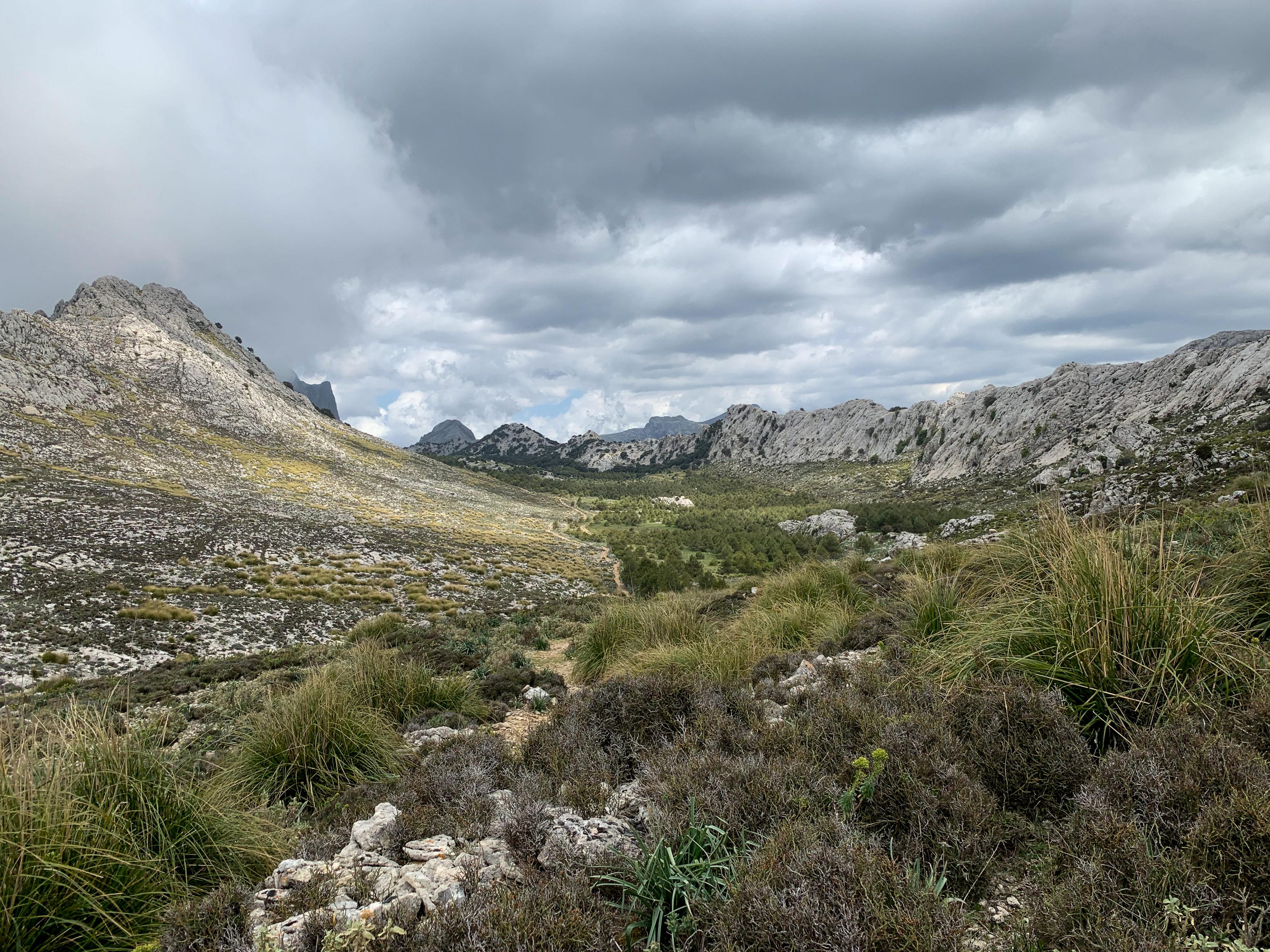 Mallorca Gebirgszug im NM