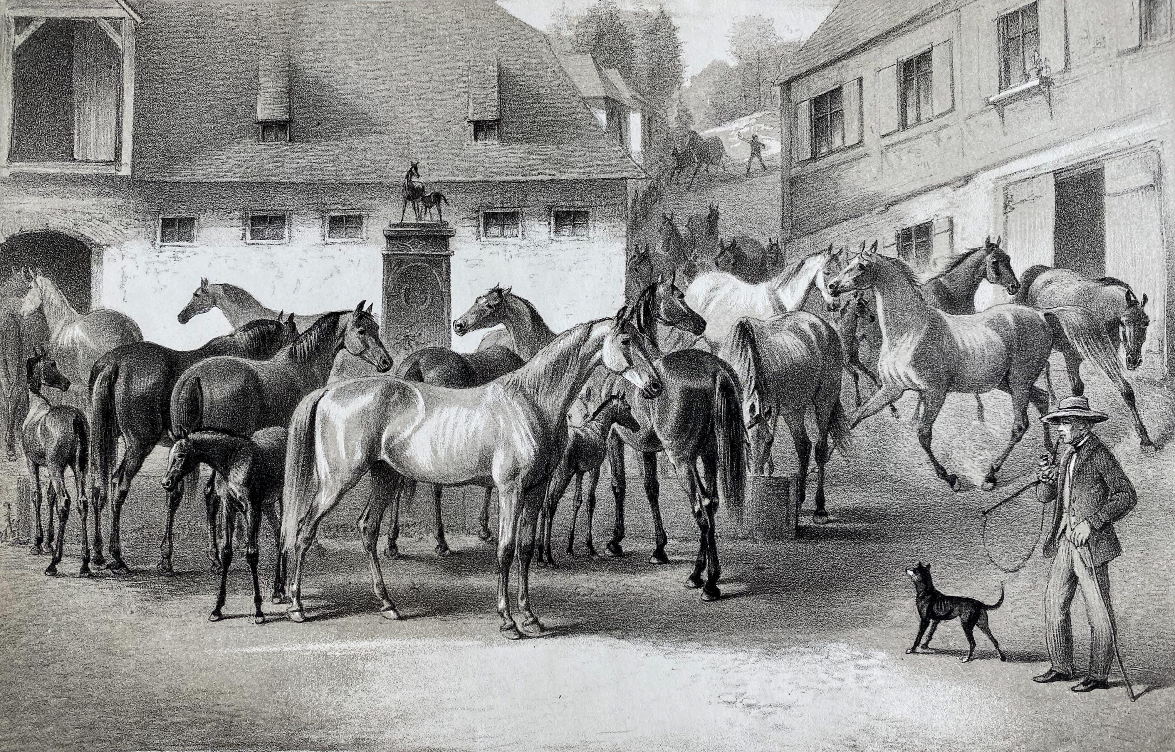 Gestütshof Marbach an der Lauter 1857
