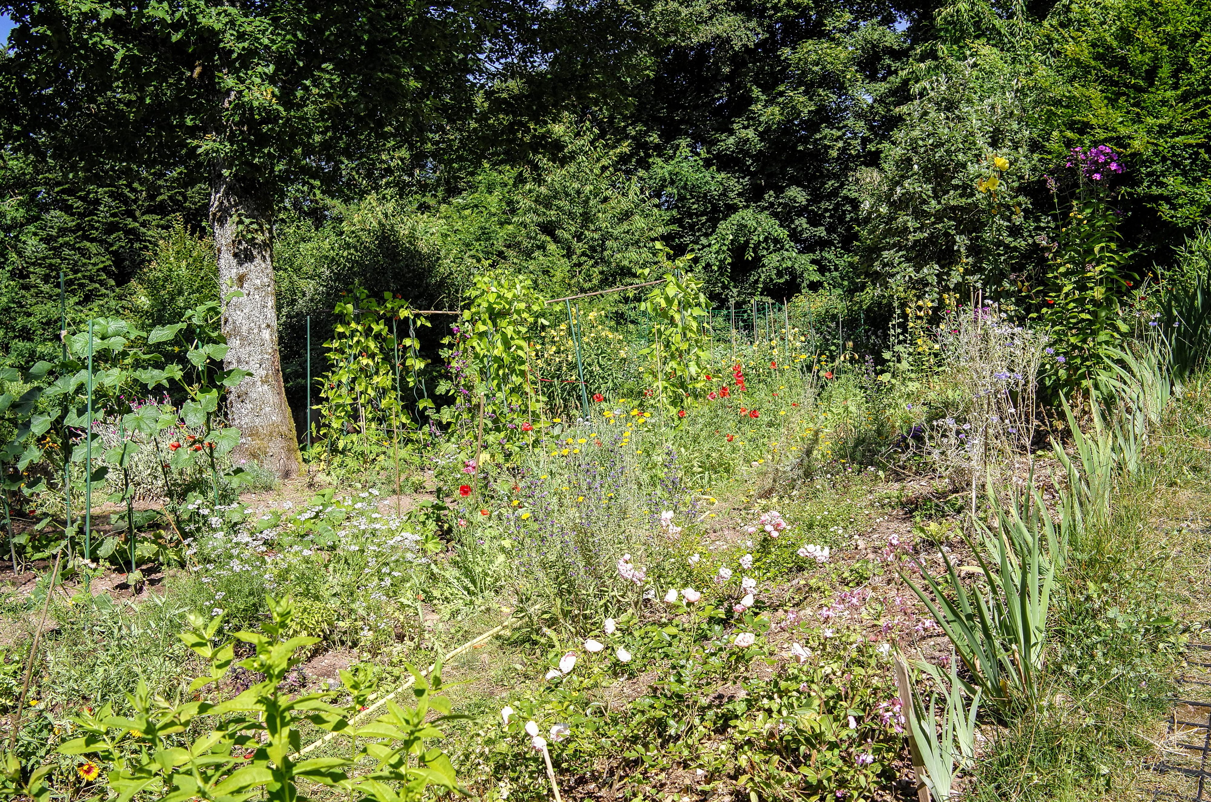 Klarissenkloster Garten der Klarissen