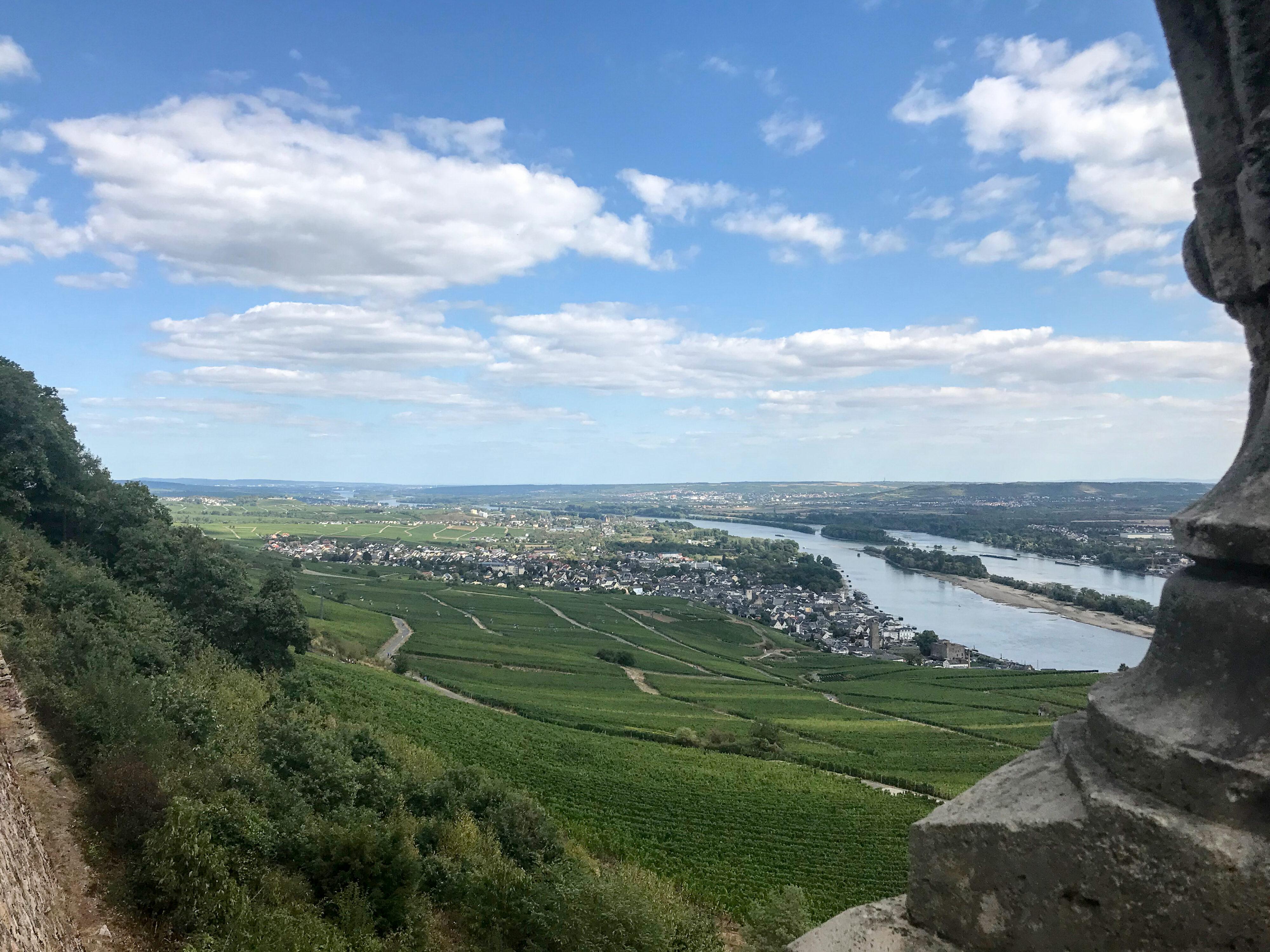 Rheintal bei Rüdesheim