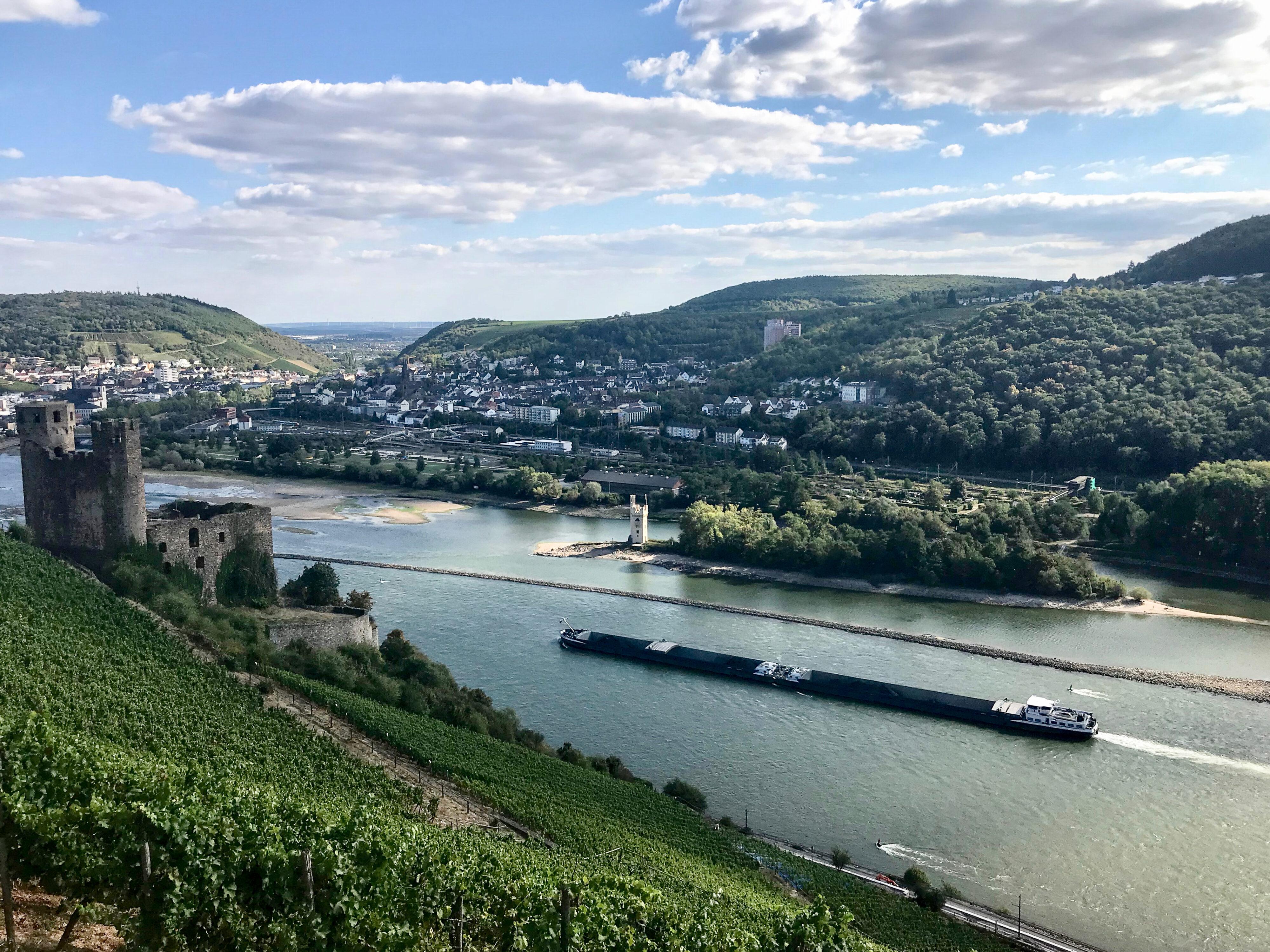 Burg Ehrenfels und Mäuseturm vom rechten Rheinufer