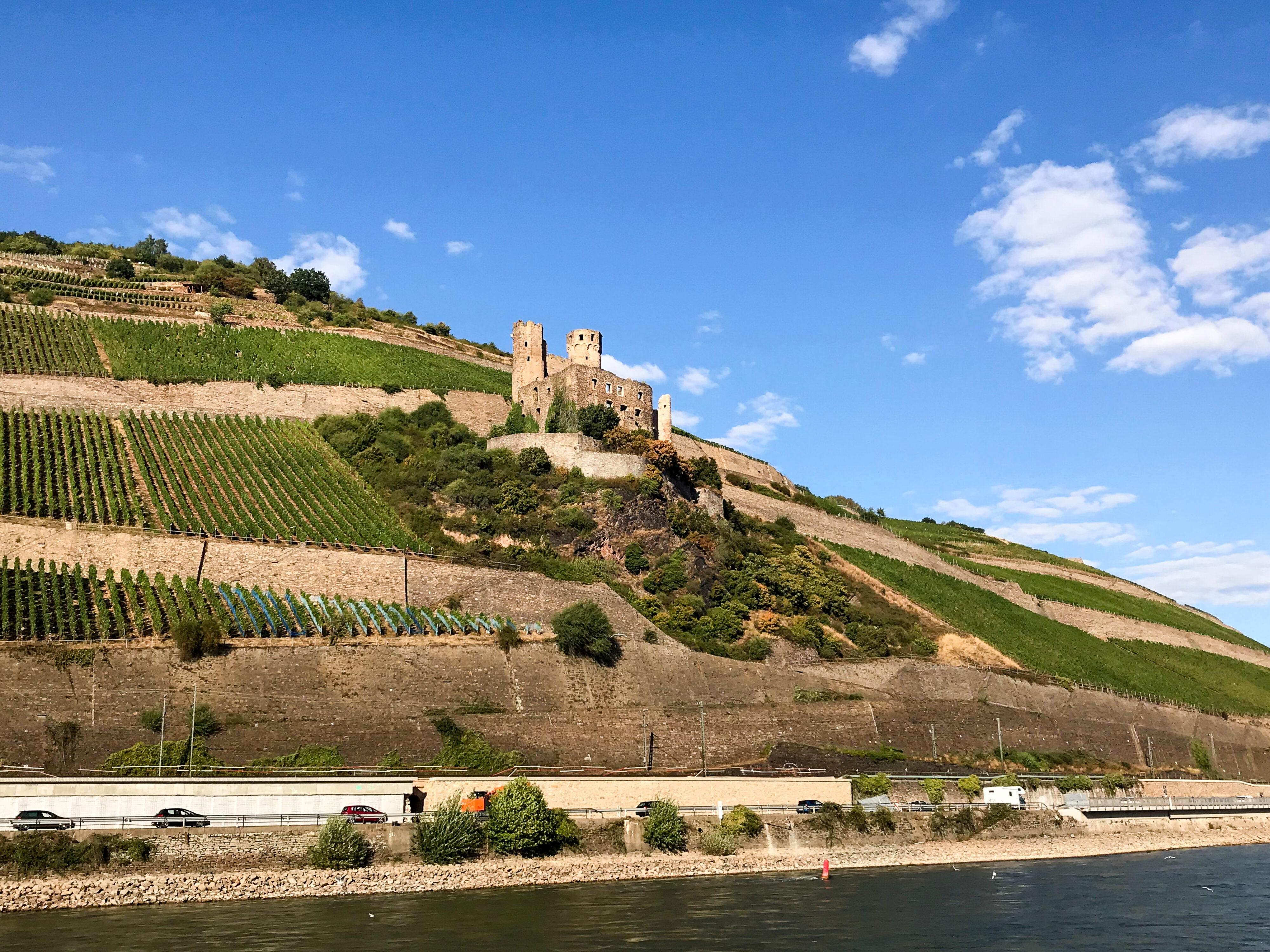 Burg Ehrenfels vom Schiff aus