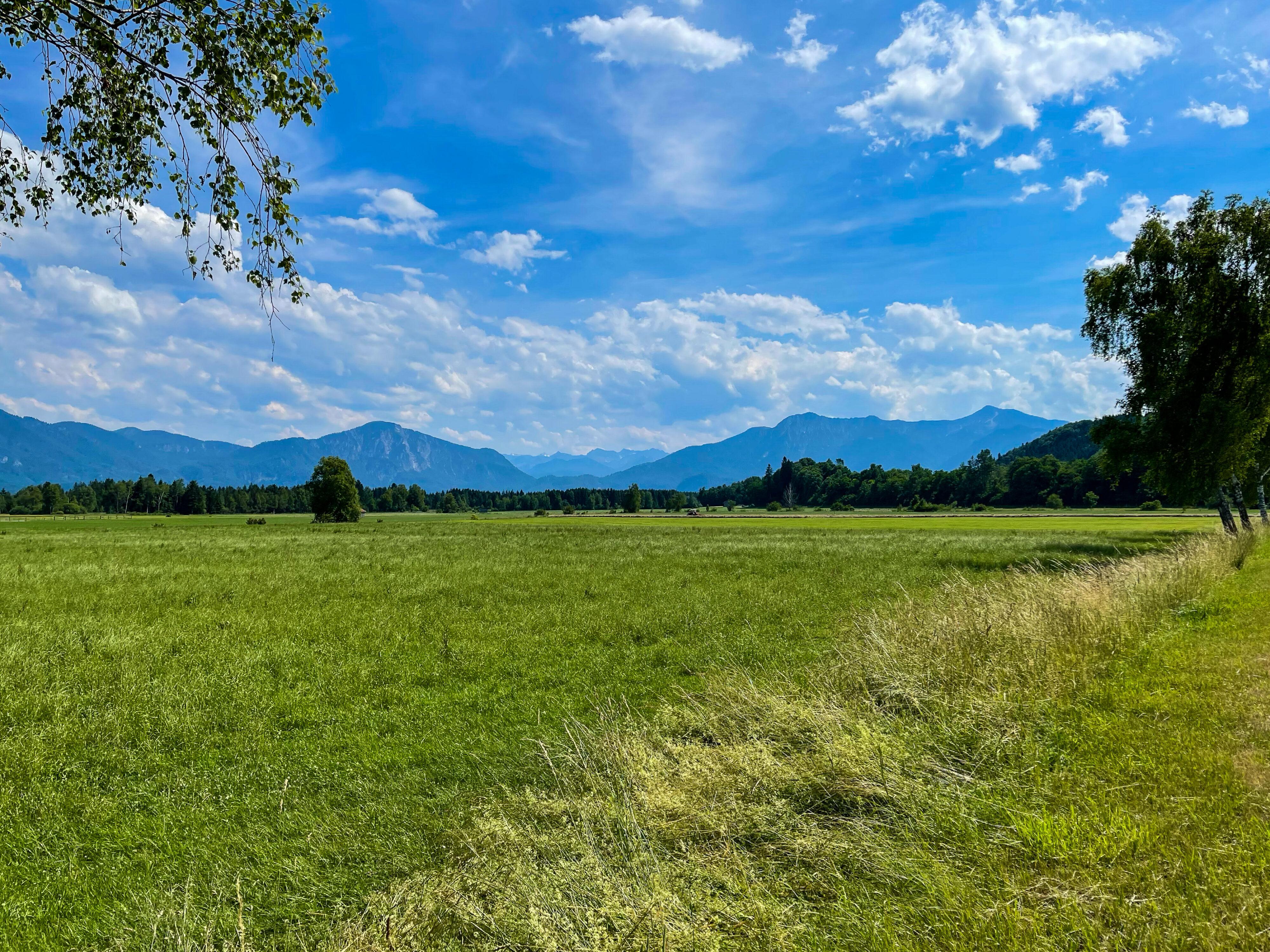 Ferien auf dem Bauernhof bei Kochel am See: Blick von Franz Marcs Sindelsdorf