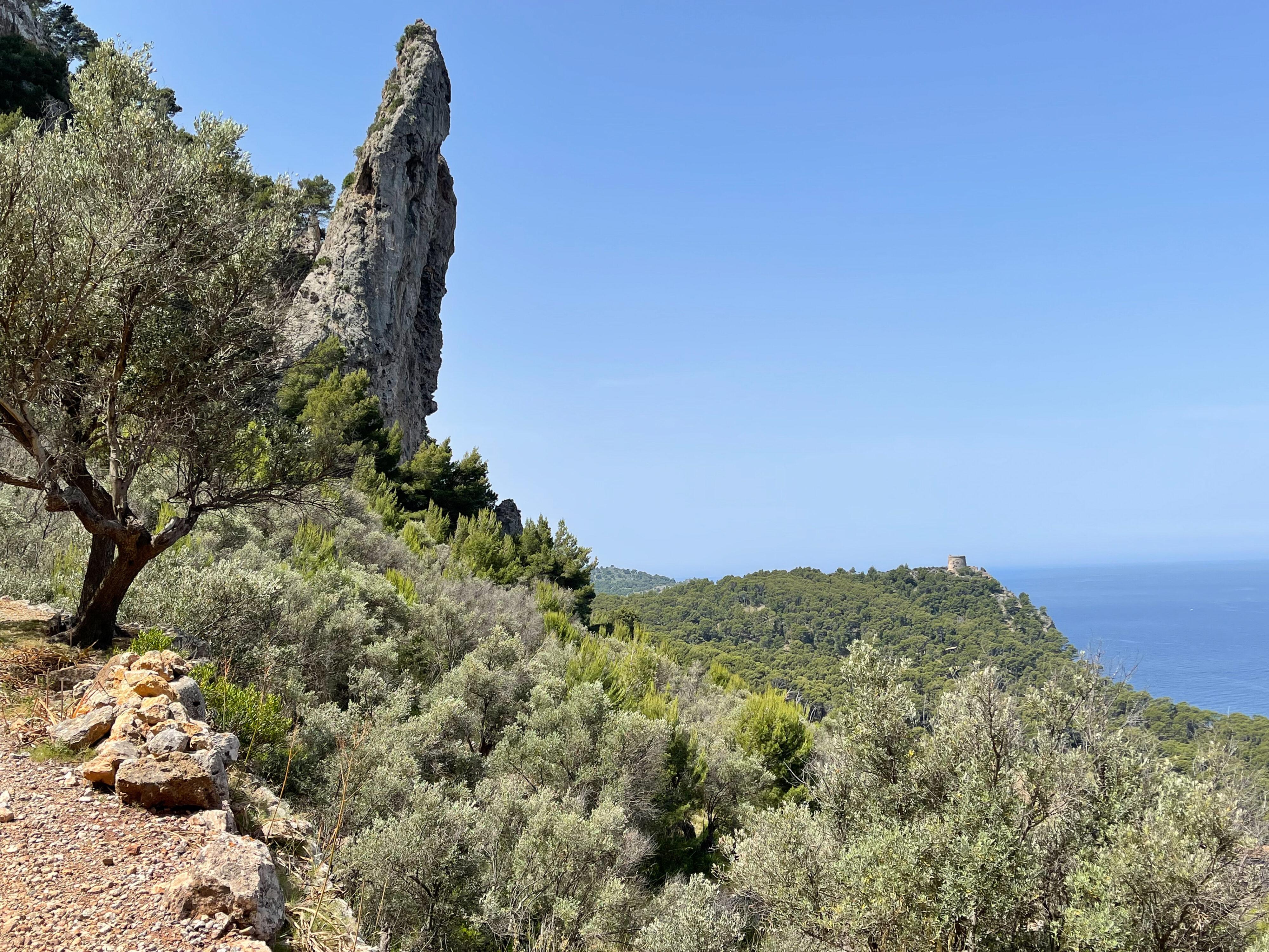 Küstenwanderung bei Port de Sóller: ein schräger Felsen ähnlich wie Felswand bei Banyalbufar