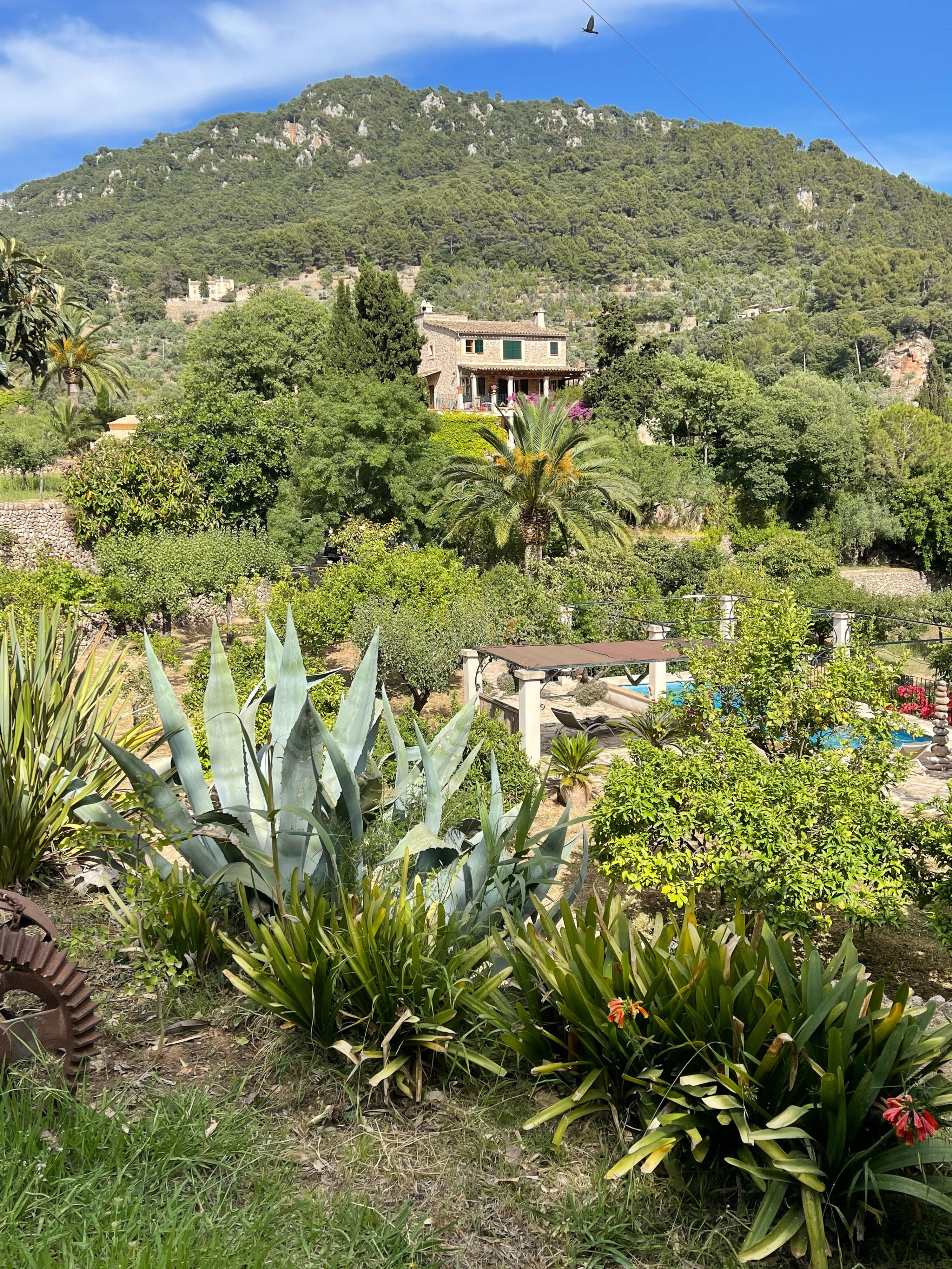 Finca Son Salvanet in Valldemossa: Blick auf Swimmingpool und Gutshaus