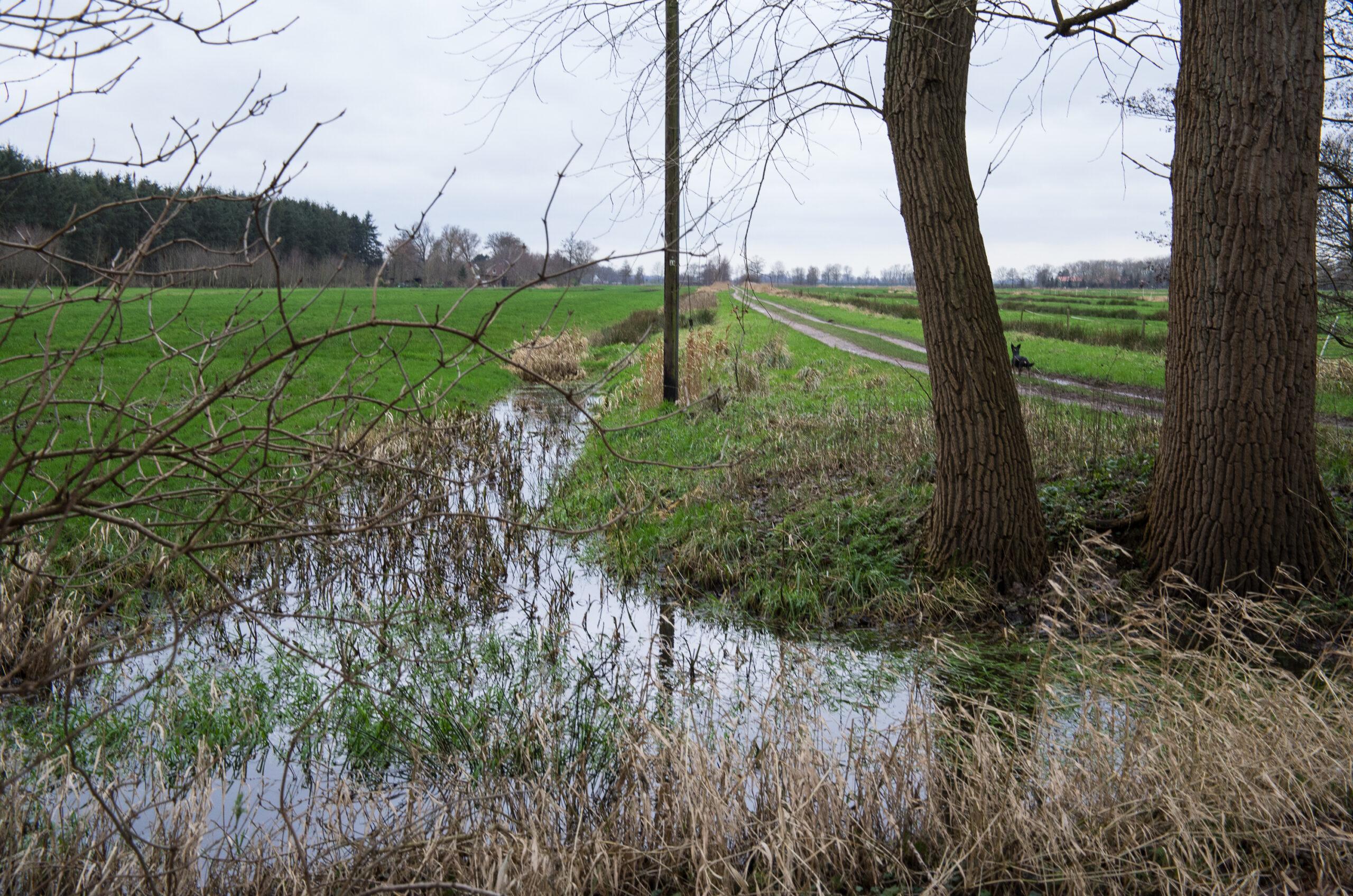 Weg zur Landstraße mit seitlichen Entwässerungsgräben