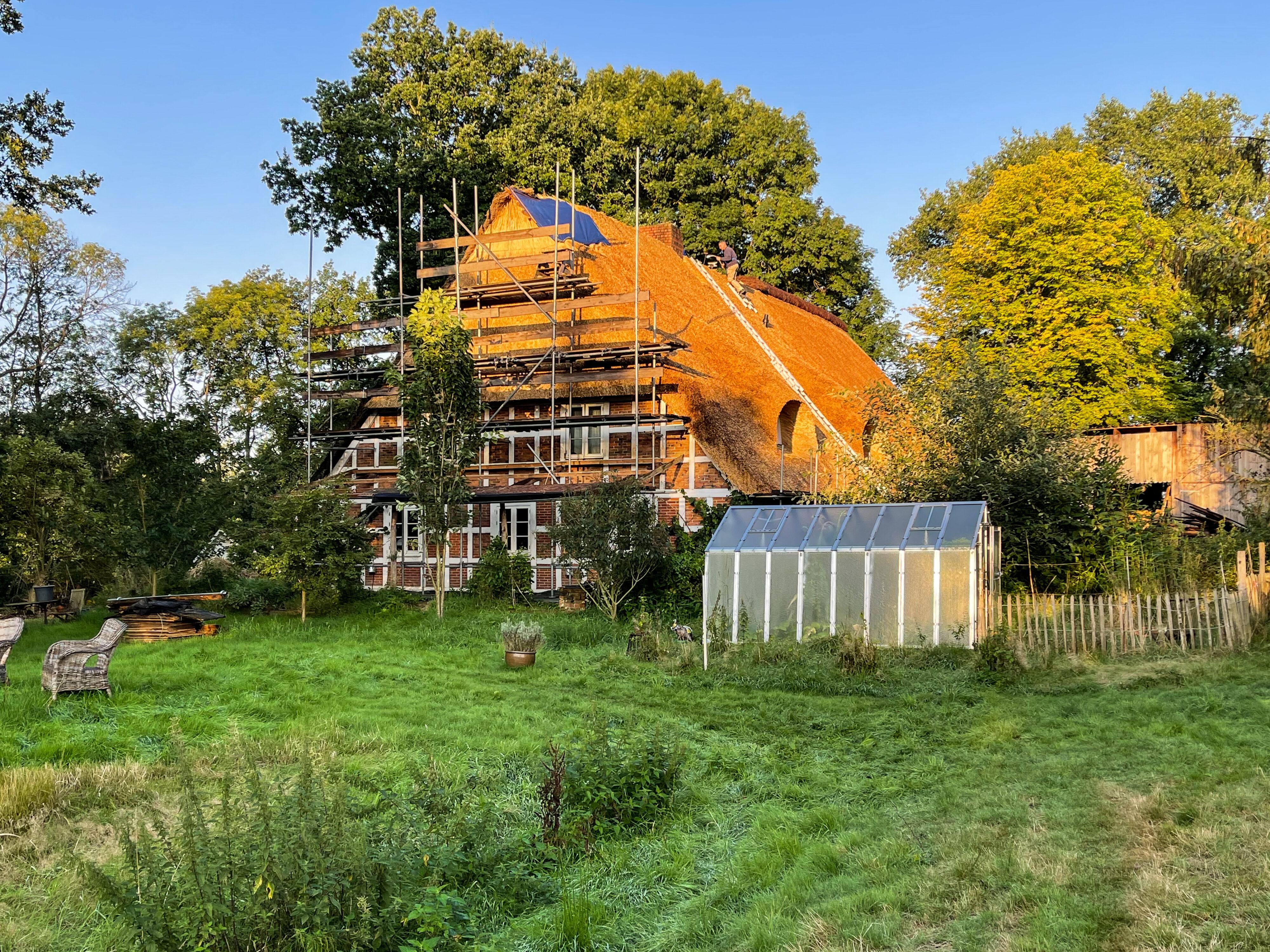 Reetdach eines Bauernhofs bei Stade: August 2021