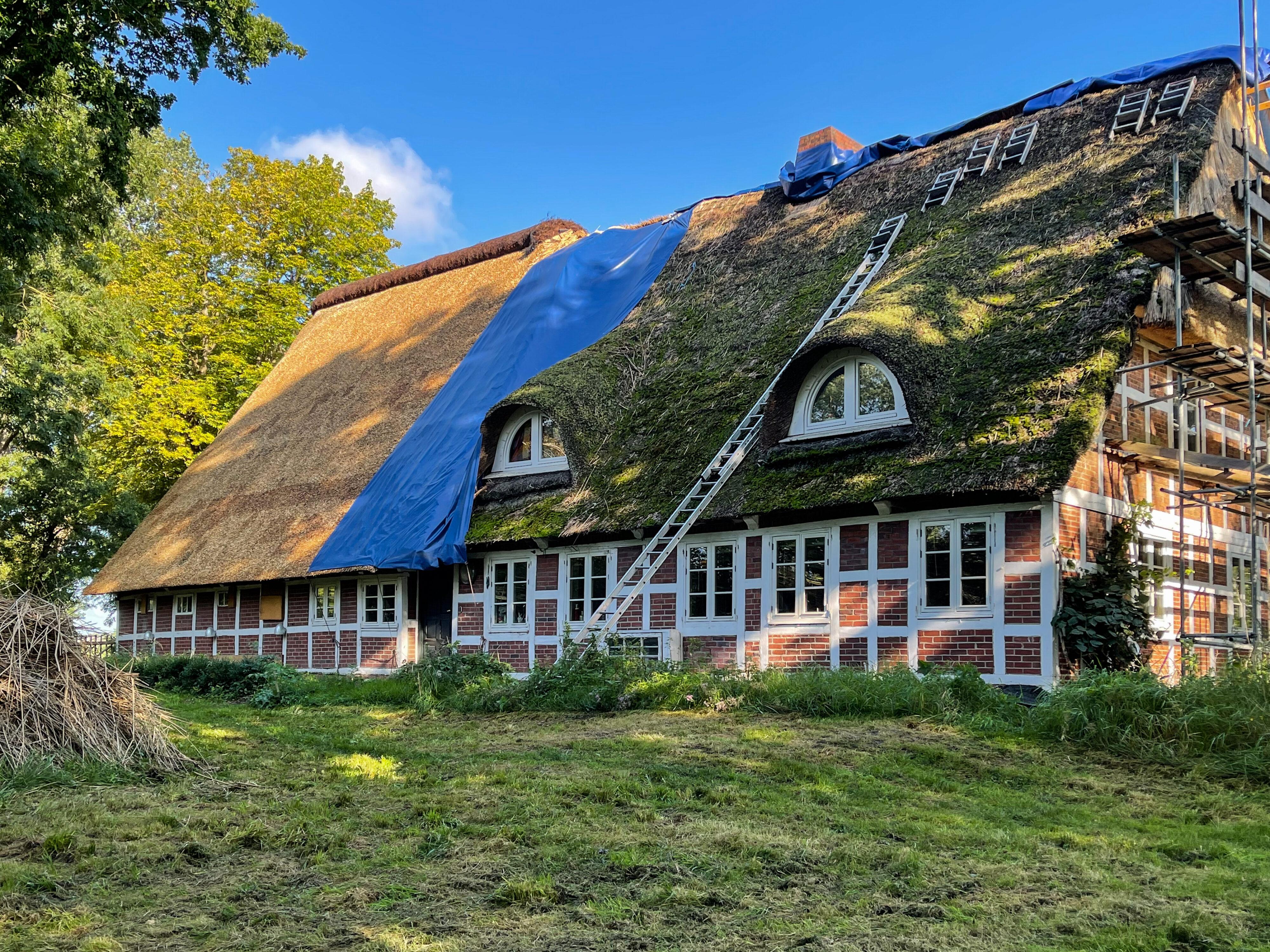 Reetdach eines Bauernhofs bei Stade: neu und alt