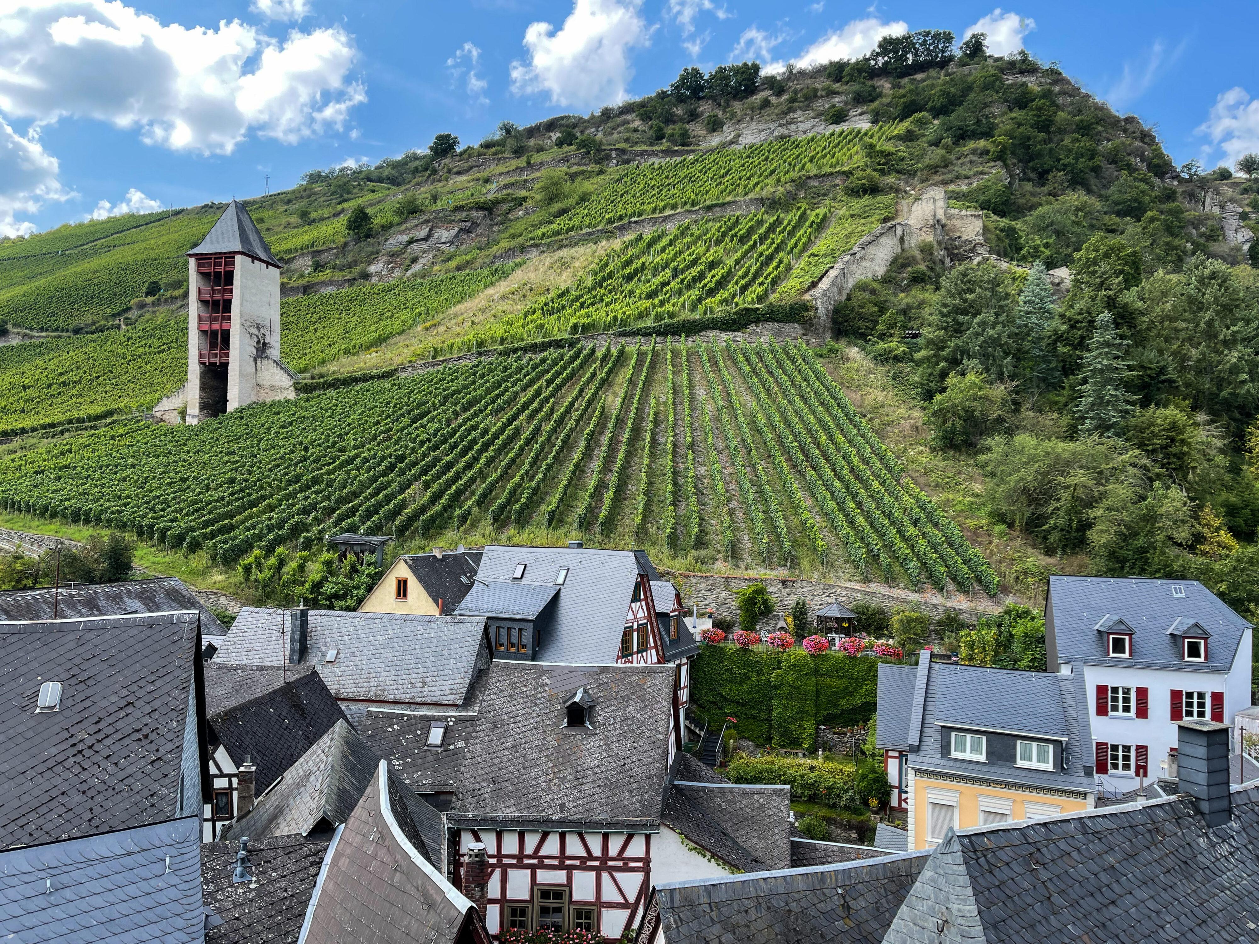 Bacharach – ein Schmuckstück der Rheinromantik: Postenturm mit Steillagen des Weinbaus